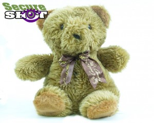 teddy cam